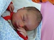David Angel Stefanov se narodil 16. dubna 2019, vážil 3495 g a měřil 49 cm. Domů do Končic pojede s maminkou Anetou a tatínkem Angelem.