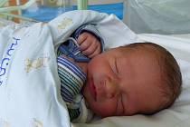 Jan Plucar se narodil 21. října 2019 v kolínské porodnici, vážil 3685 g a měřil 51 cm. Domů do Lipce odjel s bráškou Vlastíkem (3.5) a rodiči Olgou a Vlastimilem.