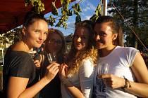 První vinobraní v Krymlově