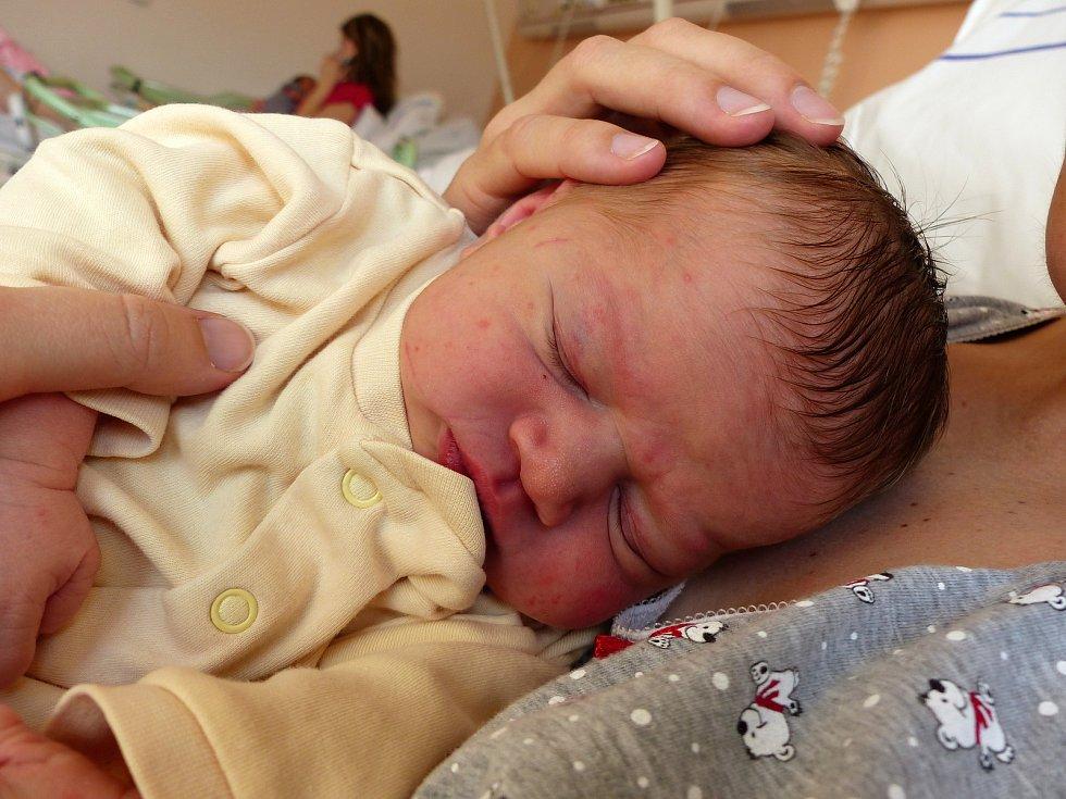 Anna Křížková se narodila 4. února 2019, vážila 3930 g a měřila 51 cm. V Křeseticích se z ní těší maminka Jana a tatínek Radek.