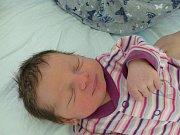 Noela Pouvová se narodila 16. dubna 2019, vážila 2945 g a měřila 47 cm. V Zásmukách se s ní těší maminka Nela a tatínek Martin