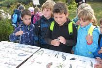 Kolínští rybáři pozvali děti do svého revíru, aby v nich probudili vztah k přírodě a rybářství.