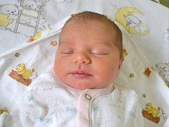 Andrea Sýkorová spatřila světlo světa 16. února 2015. Její poporodní míry byly 50 centimetrů a 3150 gramů. S maminkou Denisou žije v Kutné Hoře.