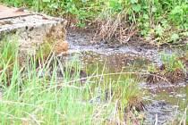 Z nádrží spodní voda vyplavuje chemikálie do okolí.