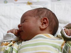 Dvouleté Danielce přibyla 25. července 2012 sestřička Dominika Motlová.  Při narození měřila 52 centimetry a vážila 3980 gramů. Maminka Kateřina a tatínek Robert si holčičku odvezli domů do Týnce nad Labem.