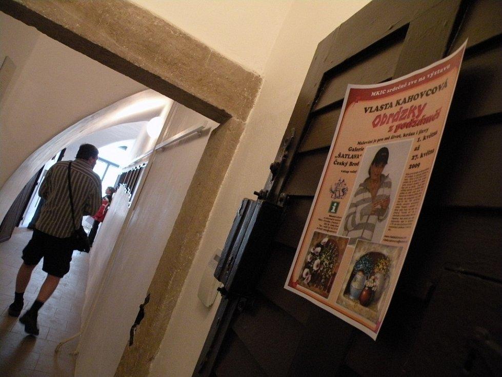 Obrázky z podzámčí v českobrodské galerii Šatlava