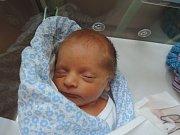 Vítek Procházka se narodil 9. listopadu 2017. Po porodu vážil 2405 gramů a vážil 45 centimetrů. Doma v Radlicích se na něj těšili rodiče Sandra a Martin.