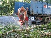 V Benešově ulici v Kolíně s zlomil kmen topolu. Nikdo naštěstí nepřišel k újmě na zdraví.