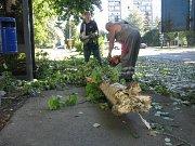 V Benešově ulici v Kolíně s zlomil kmen topolu. Nikdo naštěstí nepřišel k újmě na zdraví