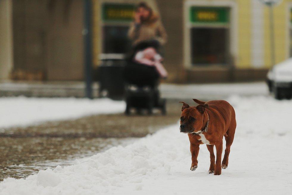 Sníh v Kolíně v neděli 7. února.