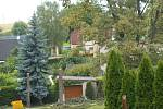 Fotografie situace po pokácení stromů