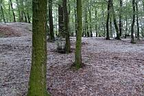 Geocaching vás zavede například do přírodního parku Škvorecká obora – Králičina