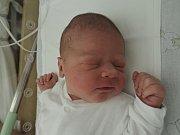 Kryštof Dvořáček se poprvé podíval na maminku Hanu a tatínka Petra 24. listopadu 2016. Po narození se chlubil mírami 55 centimetrů a 4355 gramů. Dětským světem ho doma vPraze bude provázet bráška Štěpán (3,5).