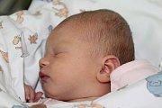 Kamila a Jiří z obce Jindice se radují z prvorozené dcery. Andrea Batelková se poprvé rozkřičela 4. října 2017 s váhou 2870 gramů a výškou 49 centimetrů.