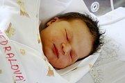 Anna Vedralová se narodila 24. prosince 2016. Vážila 3410 gramů a měřila 51 centimetrů. Doma v Kutné Hoře se na holčičku těšila maminka Radka, tatínek David a sestřičky Klára a Laura.