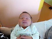 Emma Trnková se narodila 7.12.2018, vážila 3465 g a měřila 49 cm. V Pískové Lhotě ji přivítá bráška Jiřík (1.5), sestřička Anička (8) a rodiče Katka a Jiří.