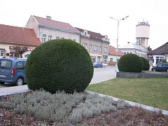 Centrum Peček