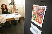 Volby do EP na Kolínsku, volební místnost na zimním stadionu Kolín