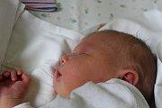 Dominika Beranová je prvorozenou dcerkou Michaely a Lukáše z Libice nad Cidlinou. Narodila se 17. července s váhou 4305 gramů a výškou 52 centimetry.