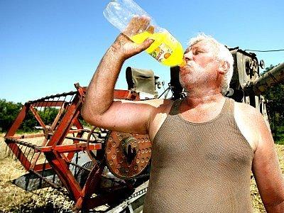 Vedra trápí všechny – úředníky, pacienty, pekaře i zemědělce. Soukromý rolník z Hlubokého Dolu Jaroslav Rauch se snaží při těžké práci na otevřené pláni rozpálené sluncem dodržovat pitný režim.