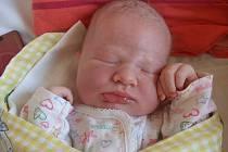 Adéla Poláková přišla na svět 17. června 2011. Po narození měřila 52 centimetry a vážila 3800 gramů. Doma v Chotuticích, kam si ji rodiče Michal a Markéta Polákovi odvezli, na ni čekaly ještě sestry Lucie a Simona.