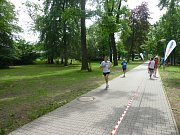 """Mezinárodní festival běhu """"Kolínská 14"""""""