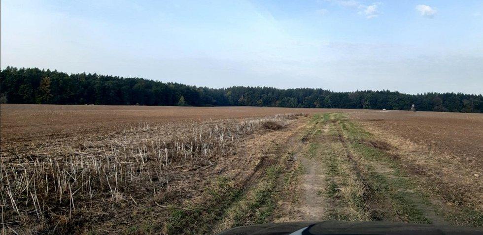 Před výsadbou stromů v Doubravčicích.