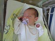 Janička Petrásková vykoukla na svět 23. dubna 2017. Pyšnila se váhou 3220 gramů a výškou 50 centimetrů. Doma v Kasanicích se na ni těšily sestry Martina (13) a Markéta (11), maminka Martina a tatínek Jan.