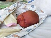 Eliška Pelikánová se narodila 3.12.2018, vážila 3290 g  měřila 50 cm. V Sobočicích ji přivítá bráška Martin (2.5) a rodiče Lenka a Marek.
