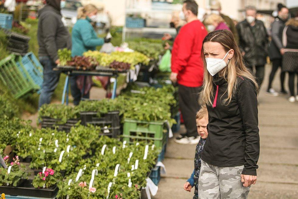 Nedělní trh ve Štítarech.