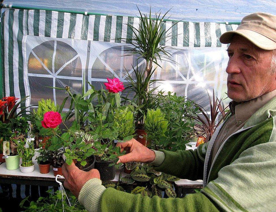 Svět květin v Trutnově opět nabídl stovky různých rostlin