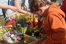 Rodinnou farmu Mejsnar z Kunčic nad Labem navštívilo o velikonoční sobotě kolem šesti tisíc návštěvníků, hlavně rodin. Děti prošly vesničkou prvních zemědělců v Čechách.