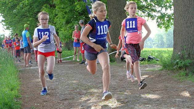 I když se letošní populární běžecký závod v hartecké aleji konal na zkrácené trati a bez vyhlášení výsledků, postavilo se na start více než 300 dětí!