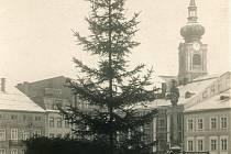 Vánoční strom na trutnovském náměstí kolem roku 1940.