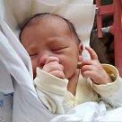 KRISTÝNA WEIGENDOVÁ se narodila 7. listopadu v 10.31 hodin rodičům Tereza a Ladislavovi. Vážila 3,23 kg. Rodina má nyní domov v Červeném Kostelci.