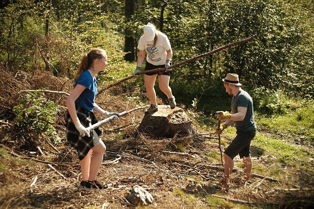 Při desetidenním workcampu jilemnické organizace Mnoho světů dobrovolníci pomáhali súklidem vlesích po těžbě dřeva.