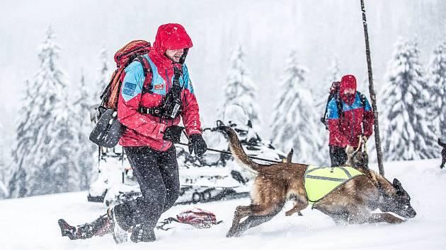 Horská služba Krkonoše v pátek našla a zachránila dva mladíky z jihu Čech ve věku 23 a 24 let. Uvízli v Labském dole.