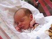ELLEN HONZEROVÁ se narodila 31. ledna ve 12.22 hodin rodičům Květě a Josefovi. Vážila 2,76 kg a měřila 47 cm. Rodina je z Malých Svatoňovic.
