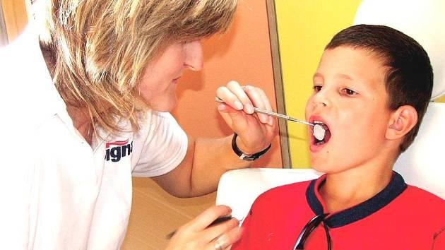 Kontrola zubů v zoo