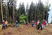 Hasiči Horních Štěpanic při úklidu lesa