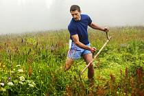 Na farmářských stezkách po Krkonoších můžete ochutnat produkty místních hospodářů.