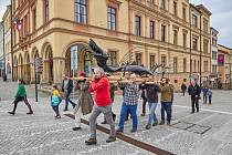 Trutnovský drak byl v sobotu vyzdvižen na věž Staré radnice na Krakonošově náměstí.