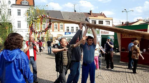 Majáles ve Dvoře Králové - stavění májky