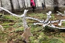 Vánoční stezka v okolí Horního Maršova.