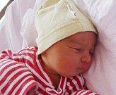 DENISA PEKOVÁ se narodila 16. února Petře a Pavlovi. Vážil 2,54 kilogramu a měřila 45 centimetrů. Doma ve Dvoře Králové už čeká i bráška Roman.