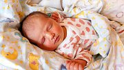 ANNA MÁSLOVÁ se narodila Petře Koškové a Janu Máslovi 8. října v 16.13 hodin. Vážila 3,88 kg a měřila 52 cm. Bydlet bude ve Vrchlabí.