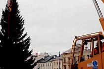 Vánoční strom v Trutnově.