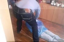 Policisté objasnili vraždu v Trutnově