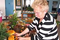 HOUBAŘSKOU VÝSTAVU pořádá Mykologický klub v úpici každý rok a tradici chce zachovat i letos. Na snímku z loňské expozice  rovná jednotlivé druhy členka klubu Marie Pospíšilová.