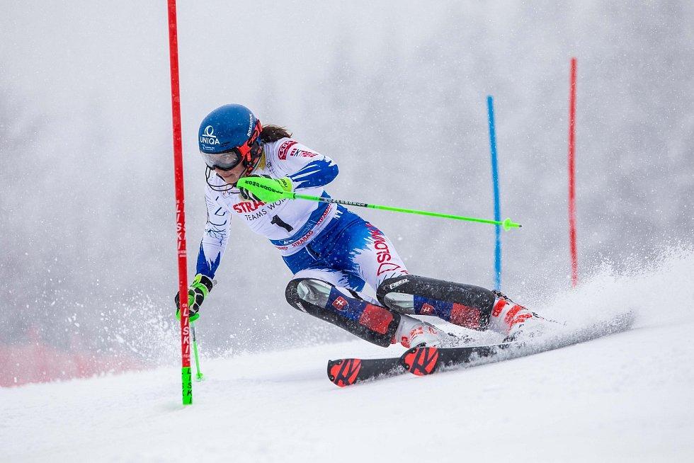 Petra Vlhová, Světový pohár v lyžování ve Špindlervoě Mlýně